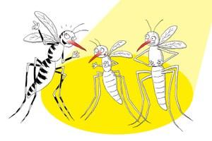 Come difendersi dalle zanzare